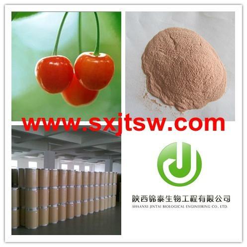 Acerola cherry extract VC 17% 25% 1