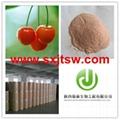 Acerola cherry extract VC 17% 25%