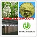 sophora japonica extract Quercetin Rutin