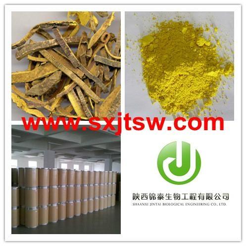 Phellodendron Extract Berberine HCL  Berberine hydrochloride 1
