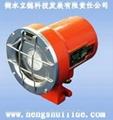 LED隔爆机车灯 1