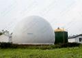 Trade Leads : Amoco Biogas Holder ---