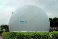 Amoco Biogas Storage System ---central