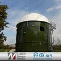 2015 AMOCO large biogas digester plant