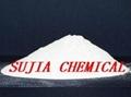 Diacetyl Tartaric Acid Esters of Mono-