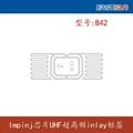 RFID电子标签Inlay B42
