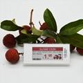 价格标签 商品标价签 esl 电子货架标签 电子价签 2.9英寸 3