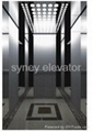 Passenger Elevator with Mirror Etching Finish for House (LL-010) 1