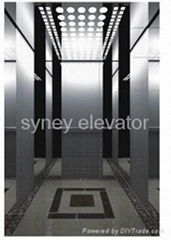 Passenger Elevator with Mirror Etching Finish for House (LL-010)