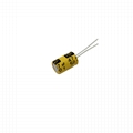 NP Aluminum Electrolytic Capacitors