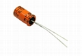 Promise of horizontal electrolytic