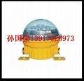 BAD603防爆固态安全照明灯