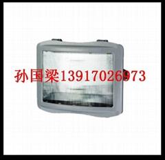 GT301防水防塵防震防眩燈