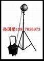 BAD502A 防爆强光工作灯 2