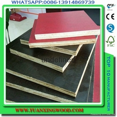 best price china 18mm brown film faced plywood for construction