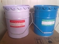 Cement products of special epoxy