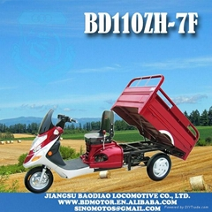 SCOOTE TRICYCLE BD110ZH-7F handicapped disabled scooter Triciclo Motocar motocar