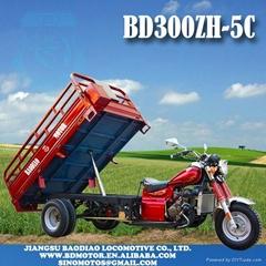 THREE WHEEL MOTORCYCLE BD300ZH-5C 2013 hydraulic auto damping Triciclo motocarro