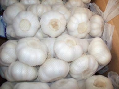 chinese fresh garlic 5