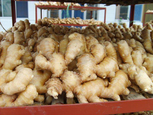 Fresh Ginger 2