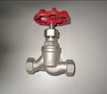 SS globe valve (S type) 2