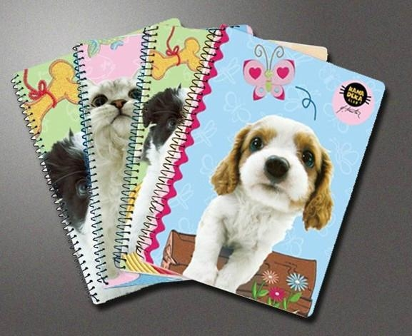 spiral binding notebook,diary notebook, agenda notebook, with logo printing 3