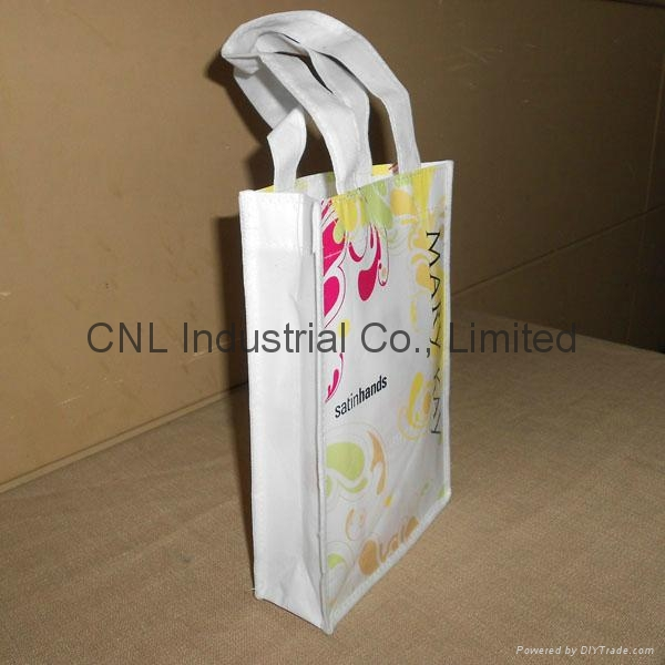 Customzied laminated non woven shopping bag 2