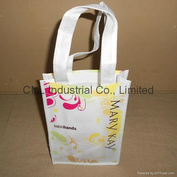 Customzied laminated non woven shopping bag 9