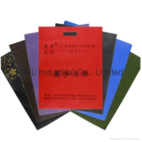 Heat Sealed Non-Woven Exhibition Bag 2