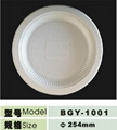 10inch disposable biodegradable plate