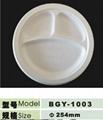 10inch disposable biogdegradable 3