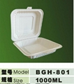 1000ml disposable biodegradable  lunch