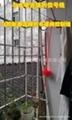 立式不鏽鋼水箱 2