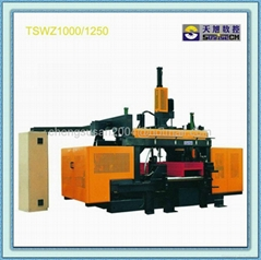 CNC Beams Drilling Line TSWZ1250