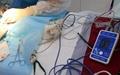 動物六參數心率醫用便攜式藍牙患者監護儀 3