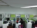 USA Green Office Cubicles With Overhead Cabinet and Shelves