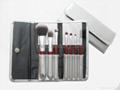 Anti Bacterial Brushes