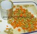 canned green peas and carrot