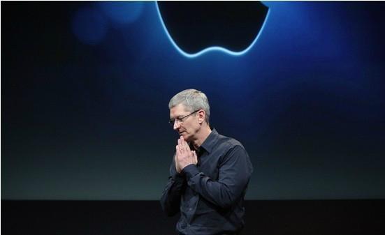 蘋果轉換插頭定製