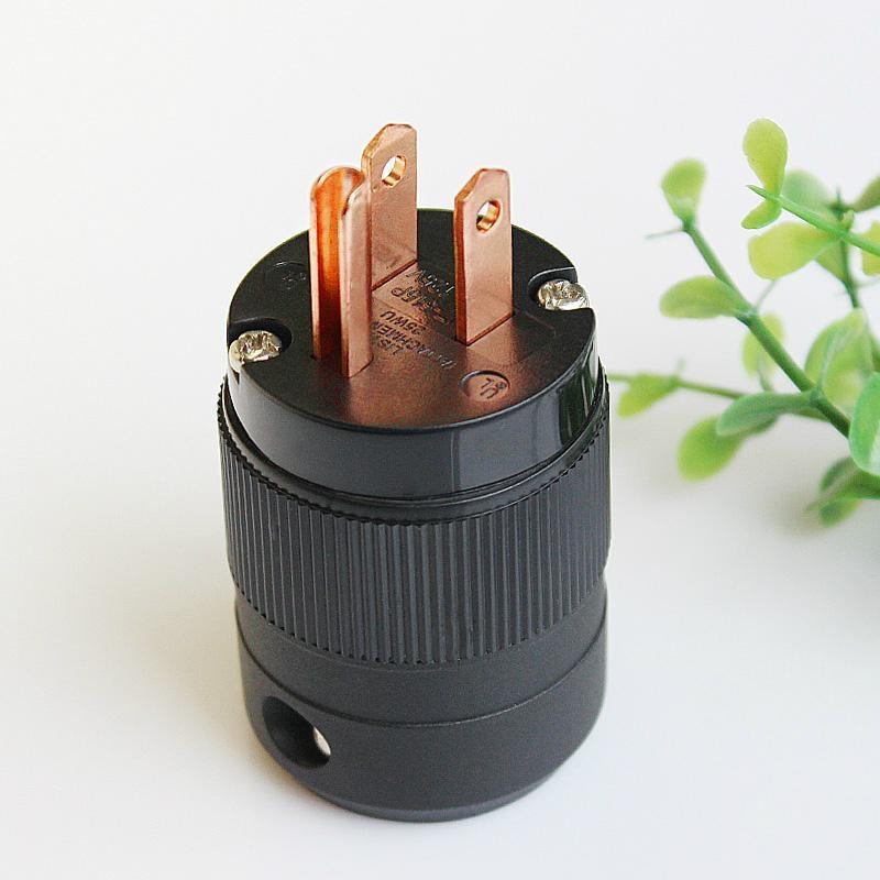 Audio power plug