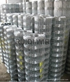 Galvanised Square Screen Sieve Fencing Wire Mesh