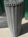 Stainless Steel Wire Mesh Conveyor Belt 1