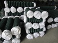 Plastic Coated Chain Link Fencing Roll 2