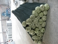Plastic Coated Chain Link Fencing Roll 3