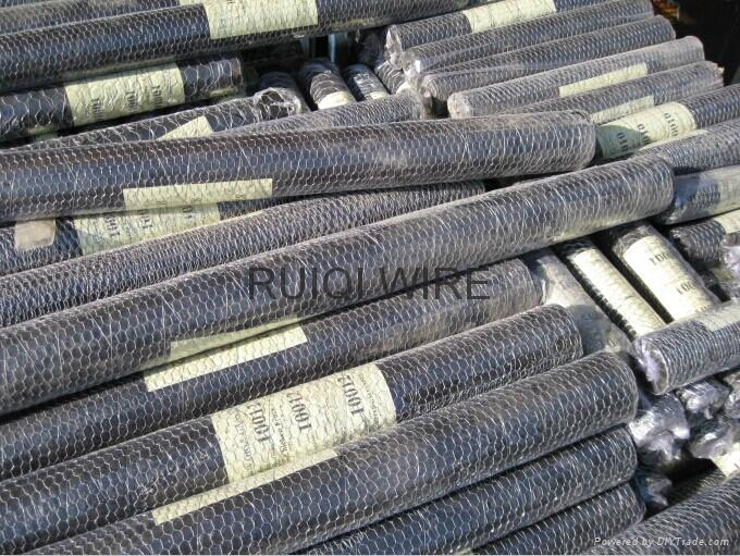 Galvanized Chicken Wire Mesh Hexagonal Netting 5