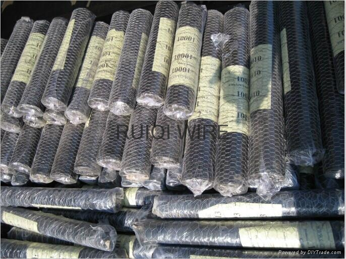 Galvanized Chicken Wire Mesh Hexagonal Netting 4