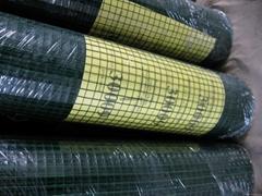 PVC Plastic Coated Welded Wire Mesh Garden Fence