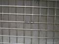 Premium 304 316 Grade Stainless Steel