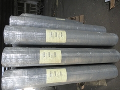 Aviary Mesh Wire Galvanised Welded Wire Mesh