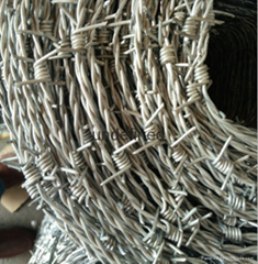 Galvanised Barbed Wire F